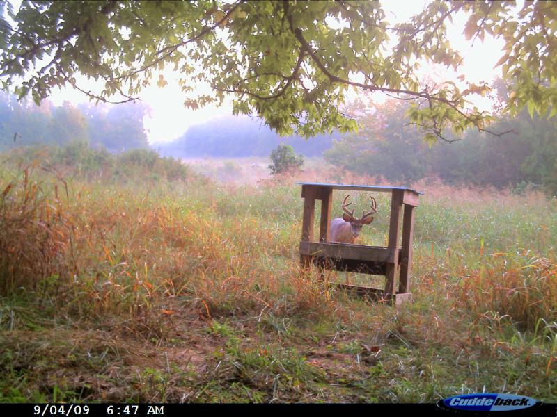 Plots Plus Wildlife Hunting Land Management Services